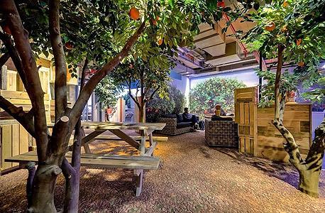 מוסף 14.2.13 גוגל תל אביב, צילום: Itay sikolski