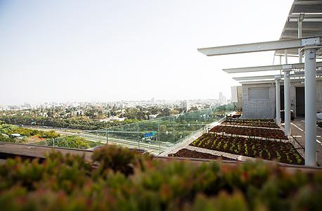 הגינה על הגג והשפופרות הטרמו־סולאריות בחזית הדרומית. מתכננים סככת גפנים בהשראת בתי שיח' מוניס, שעליהם הוקמה האוניברסיטה