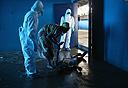 אבולה, צילום: Getty images