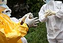 אבולה, צילום: אימג'בנק, Gettyimages