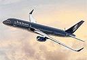 המטוס הפרטי, צילום: Four Seasons