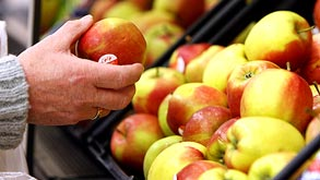תפוחים, צילום: בלומברג