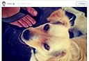התמונה הראשונה באינסטגרם, צילום: instagram-kevin