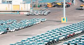 מגרש מכוניות נמל אשדוד, צילום: אוראל כהן