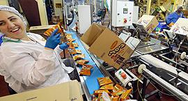 עובדים מפעל אסם ב שדרות, צילום: גדי קבלו