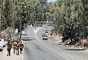 """במקום מחנות צה""""ל: אושרה הקמת 11 אלף יחידות בתל השומר"""