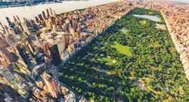 פוטו פארקים עירוניים סנטרל פארק ניו יורק , צילום: שאטרסטוק