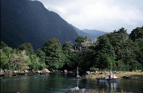 הפארק של דגלאס טומפקינס בדרום צ'ילה