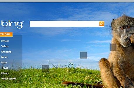 התמונה בעמוד הראשי של בינג מתחלפת מדי יום ומובילה לחיפושים מומלצים בנושא המופיע בה