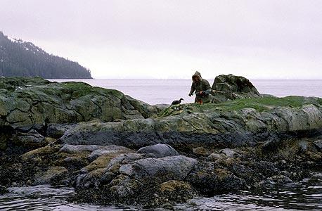 מפרץ פרינס ויליאם. 100 אלף ליטר של נפט שכבו בקרקעית