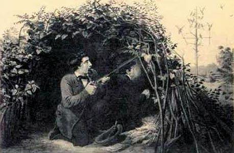 רישומים של ציד יונים נודדות במאה ה-19