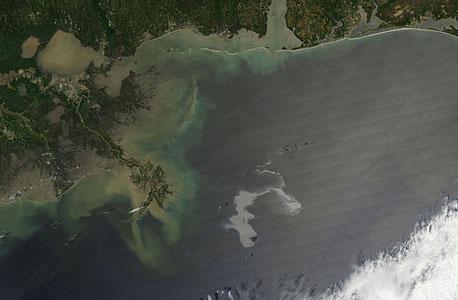 אסון סביבתי: דליפת הנפט במפרץ מקסיקו הגיעה לחופי לואיזיאנה