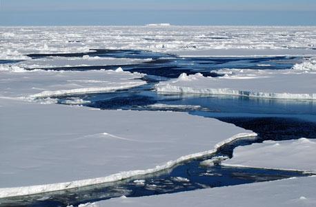הקוטב הצפוני  קוטב קרח ים מוסף, צילום: SHUTTERSTOCK