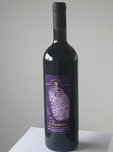 סוסון ים, רומאן 2008. טעם עשיר