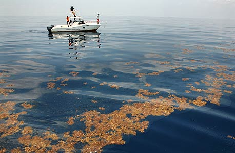 עובד לשעבר של BP נעצר בחשד שהשמיד ראיות לגבי דליפת הנפט במפרץ מקסיקו