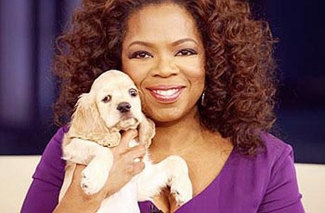 """אופרה וינפרי והכלב. כלביה קיבלו """"רק"""" 30 מיליון דולר"""