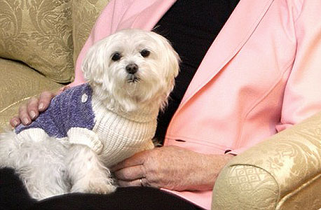 הכלב של ליאונה הלמסלי. נישלה את נכדיה, אך הורישה לכלבה 12 מיליון דולר