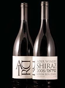 אדיר, שיראז, 2008
