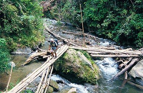 קוקודה טרק, פפואה גינאה החדשה. ב-2009 נהרגו ארבעה מטיילים במסלול