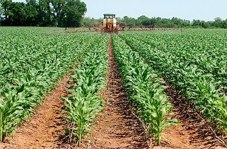 שינוי ייעוד הקרקע עשוי להימשך זמן רב