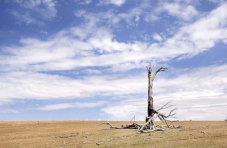 """דו""""ח: 95% שהאדם הוא הגורם להתחממות כדור הארץ"""