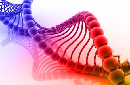 איור DNA, צילום: shuterstock