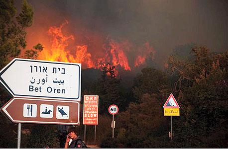 השריפה בבית אורן