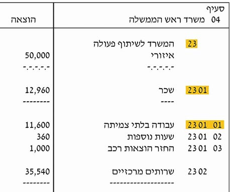 צילום מתוך תקציב 2010. מודגשים: סימולי שלוש רמות הפירוט הבסיסיות