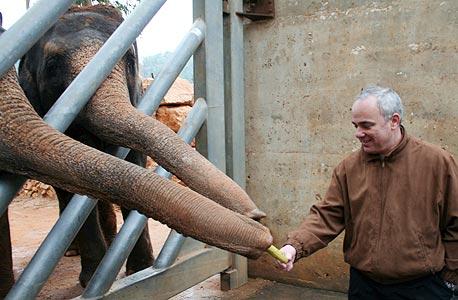 שטייניץ בוחן את תקציב הפילים מקרוב