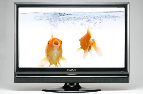 T51A-U LCD HD Ready של אינובה. מחיר: 1,099 שקל