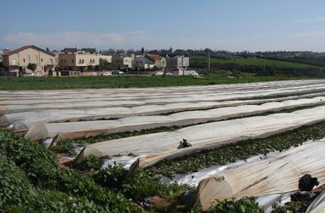 תל מונד: זוג תובע את המועצה על מכירת מגרש שלא היה בבעלותה המלאה