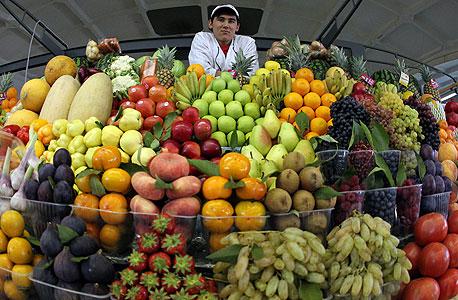 המיליונר נגד הפירות