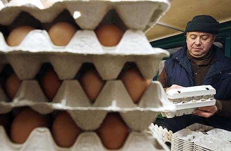 בגלל מחסור בשוק: אושר ייבוא של 10 מיליון ביצים