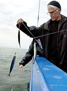 """טד דנסון. """"אני יודע הרבה על דגים בשביל שחקן, אבל לא בשביל מומחה"""""""