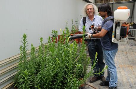 משמאל: פרופ' אריה מרקוס, ממייסדי BotanoCap