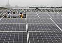 פאנלים סולאריים, צילום: רויטרס