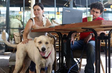 קפה טאטי, גבעתיים, צילום: אוראל כהן