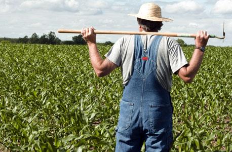 חקלאים. שנת מבחן לממשלה