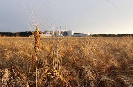 האם החקלאים יובילו את המהפכה?