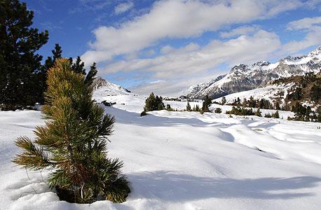 הפארק הלאומי של שוויץ, cc by habi