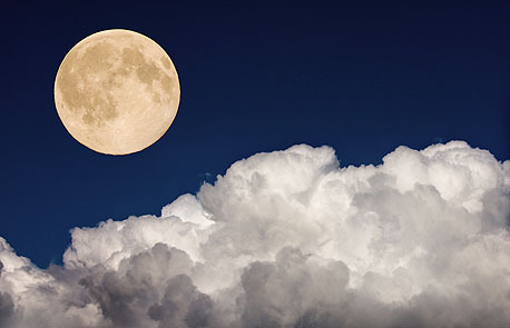 NASA announced that the Moon was wetter than science had previously predicted. Photo: Shutterstock