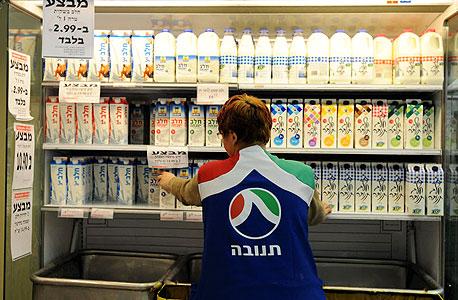 מדף של מוצרי חלב