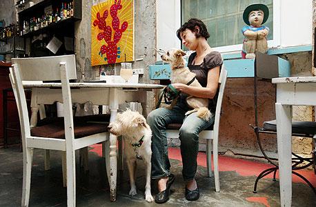 ביסטרו נועה, יפו, צילום: עמית שעל
