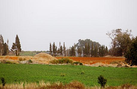 """קרקע חקלאית. """"זה לא מקצועי להבטיח שבסוף תהיה דירה"""", צילום: נמרוד גליקמן"""