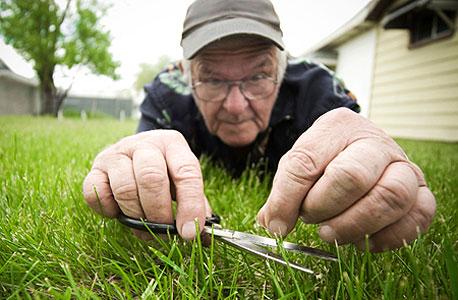 האם יש ריח לדשא מקוצץ?