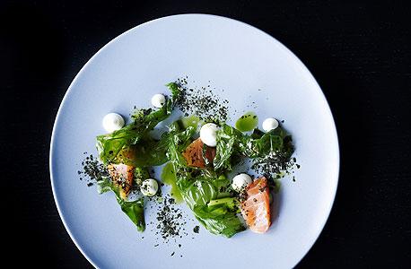 מנה של מסעדת רדיו — סלומון מעושן קלות, אצות ופרוסות קישוא במלח גס עם נגיעות יוגורט ושמן שמיר