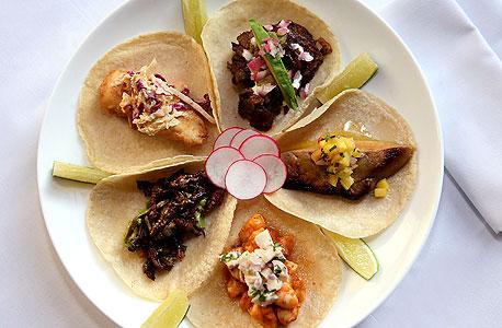 פלטת טאקו עם חרקים שונים במסעדת טולואצ'ה במנהטן