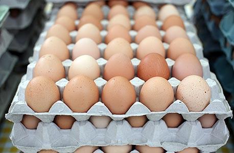 ביצים (ארכיון)