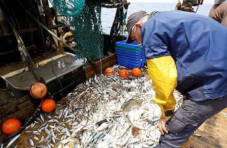 יש דברים שאפשר לעשות בפייסבוק כדי להציל את הדגים: לדוגמה לנסות להתאגד ולקנות ספינות מכמורתן מבעליהן כדי לצמצם את הצי. או לדרוש מתוכניות בישול לצלם גם מעדנים מסרדינים, ולא רק מלוקוס וטונה