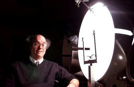 בריינרד, מהמובילים בחקר האור והשינה. איך מתמודדים עם 16 שקיעות ביום?